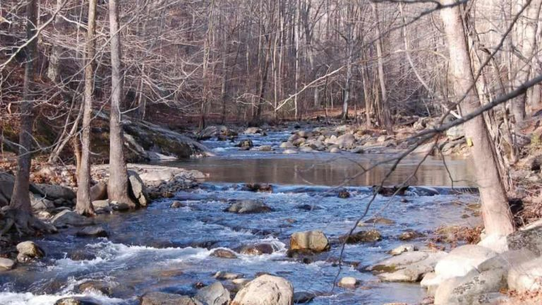 Homesites from one acre to hundreds of acres in the central Virginia Blue Ridge Mountains.
